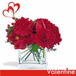 Valentine Carnations with love